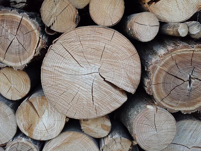 wood-1649085_640